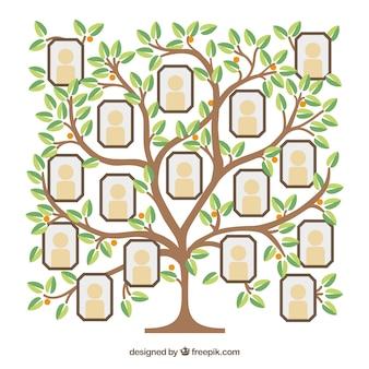 Fotocollage sjabloon met platte boom