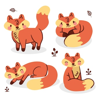 Fox collectie tekening