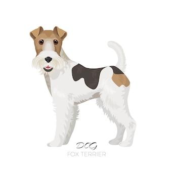 Fox terrier hond mooi huisdier