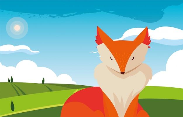 Fox zoogdier dier in een natuurlijke lanscape