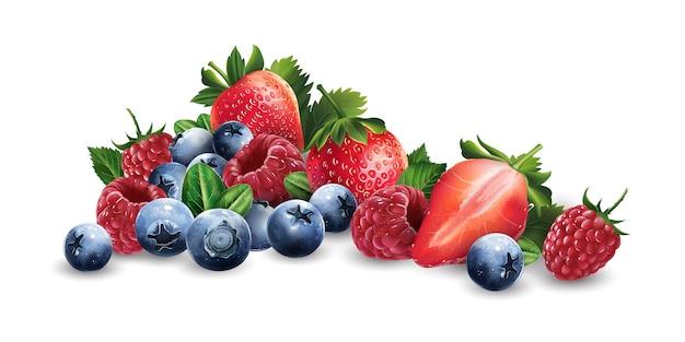 Frambozen, bosbessen en aardbeien