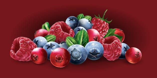 Frambozen, veenbessen, bosbessen en aardbeien