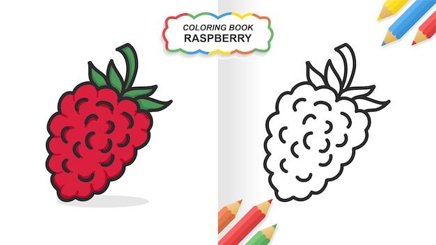 Frambozenfruit hand getekend kleurboek om te leren. egale kleur klaar om af te drukken