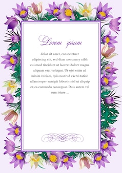 Frame met de bloemen van pulsatilla patens