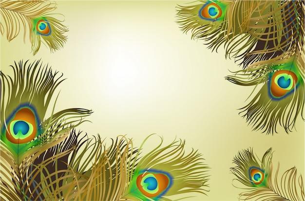 Frame met pauw veren achtergrond
