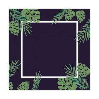 Frame met tak met blad van de zomer