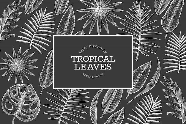 Frame met tropische planten. hand getekend tropische zomer exotische bladeren illustratie