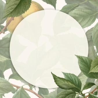 Frame op briançon abrikoos achtergrond vector