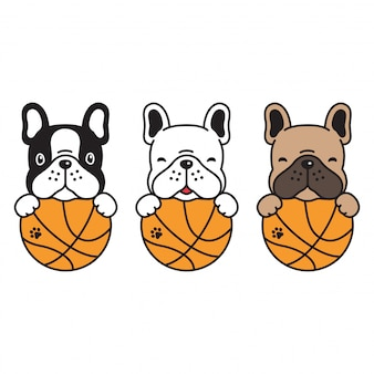 Franse bulldog basketbal hond