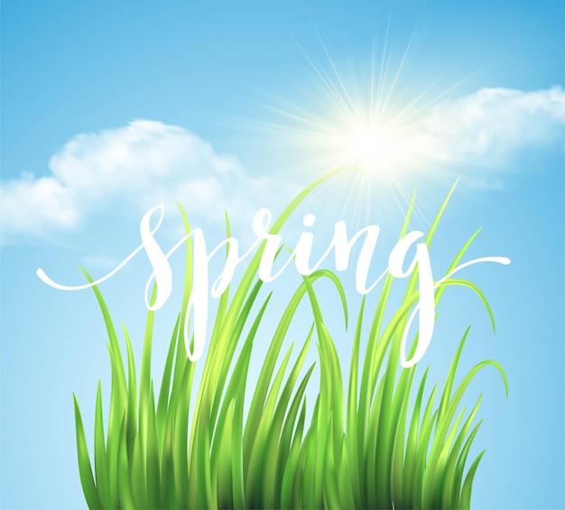 Frash spring groene gras achtergrond. illustratie