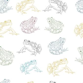 Frog line art naadloos