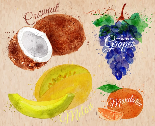 Fruit aquarel kokosnoot, meloen, mandarijn, kraft