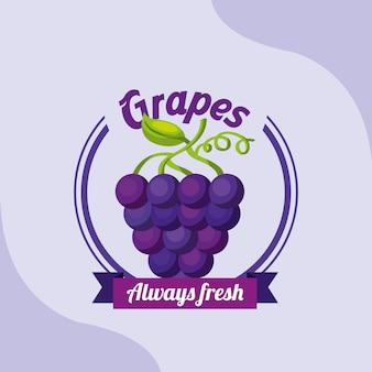 Fruit bos druiven altijd vers embleem