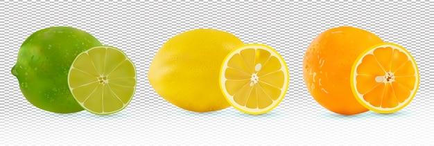Fruit citrus sinaasappel, citroen, limoen.
