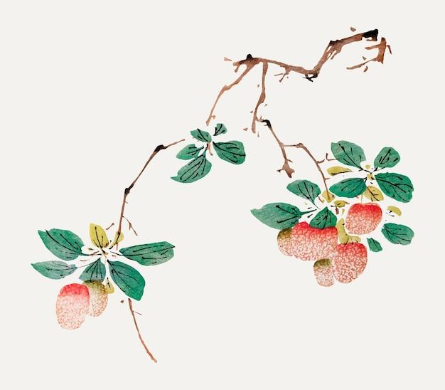 Fruit vector botanische kunst print, geremixt van kunstwerken van hu zhengyan