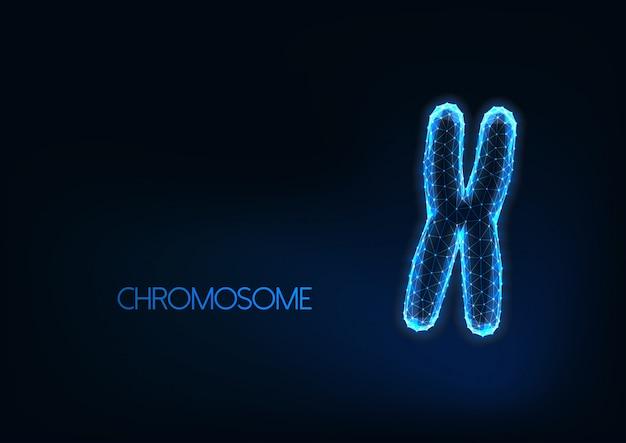 Futuristisch gloeiend laag veelhoekig geïsoleerd chromosoom