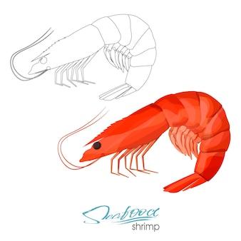 Garnalen vectorillustratie in cartoon stijl geïsoleerd lineair silhouet van een garnaal