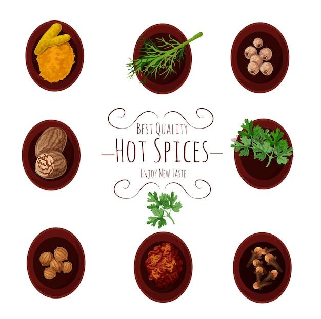 Geassorteerde indiase kruiden en specerijen set