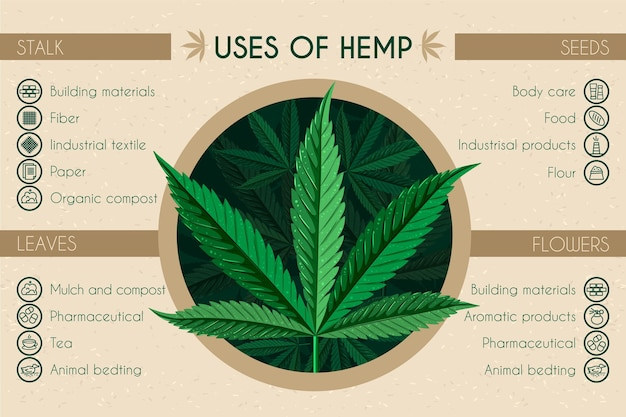 Gebruik van hennep infographic