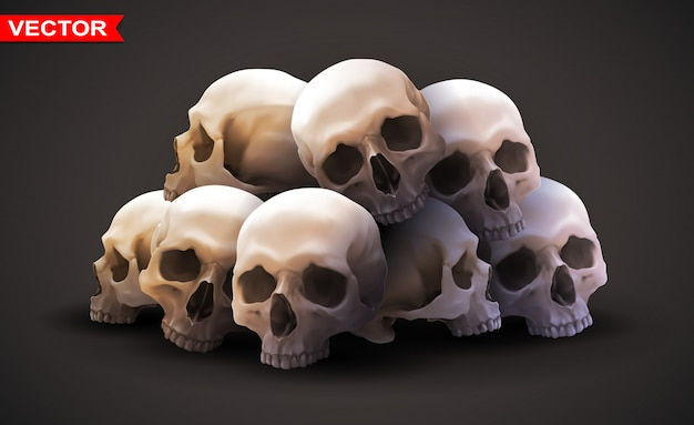 Gedetailleerde grafische fotorealistische menselijke schedels