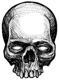 Gedetailleerde grafische hand getekend realistische zwart-wit boos menselijke schedel met tanden. prullenbak polka stijl. op witte achtergrond. vector pictogram.