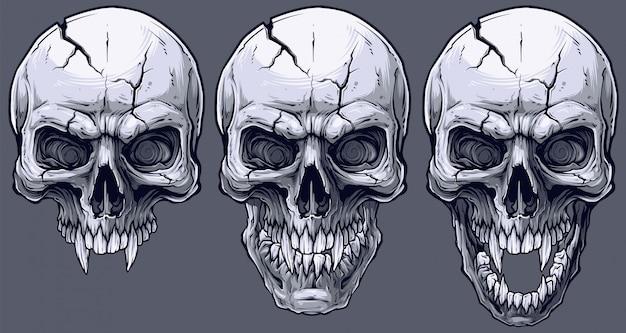 Gedetailleerde grafische zwart-witte menselijke geplaatste schedels