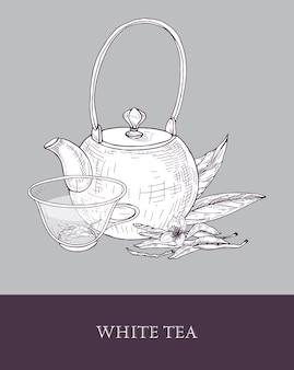 Gedetailleerde zwart-wit tekening van theepot, transparant glazen kopje witte thee, bloemen en bladeren op grijs