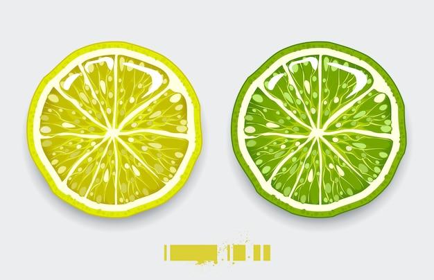 Geïsoleerd citroenachtig ontwerp
