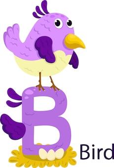 Geïsoleerd dierlijk alfabet b voor vogel op wit
