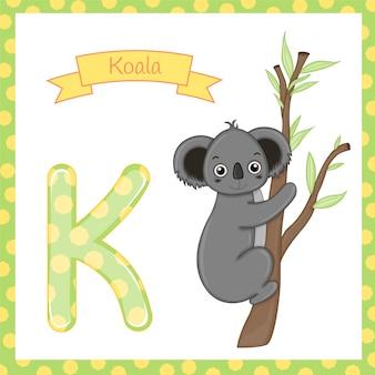 Geïsoleerd dierlijk alfabet k voor koala op wit