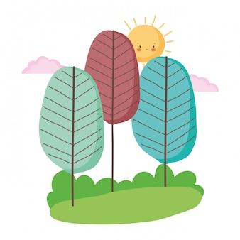 Geïsoleerde abstract en seizoen bomen