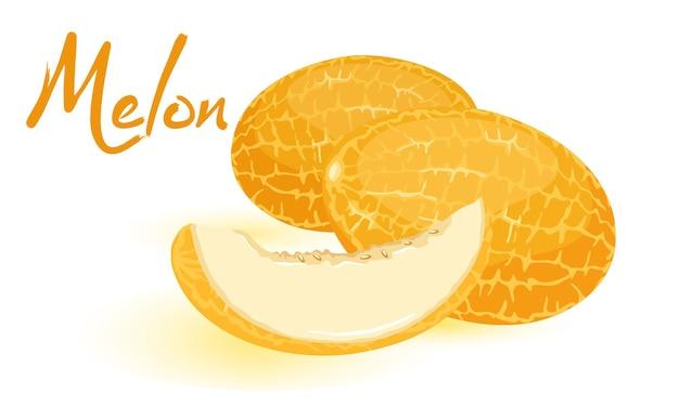 Geïsoleerde afbeelding toont oranje rijpe meloenen met gesneden sappige zoete plak cartoon stijl op witte achtergrond