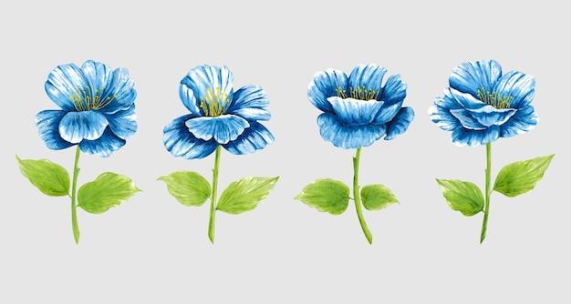 Geïsoleerde blauwe aquarel bloem clip art collectie