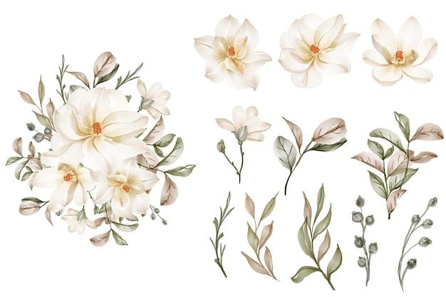 Geïsoleerde elegante witte magnolia bloem bladeren collectie