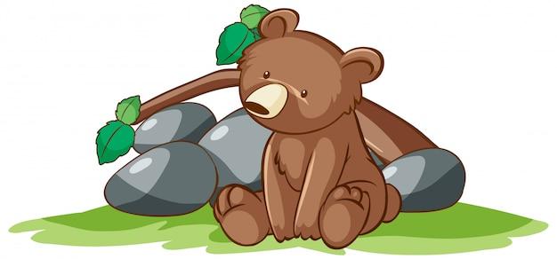 Geïsoleerde hand getrokken van kleine beer in het park
