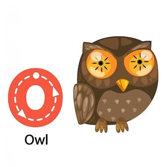 Geïsoleerde illustratie alfabetbrief o-uil