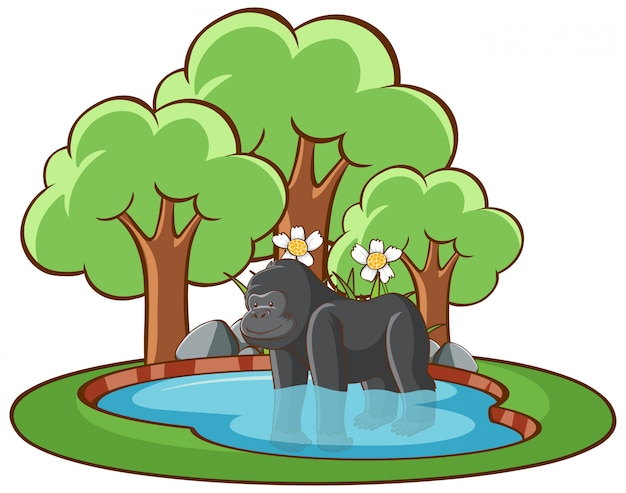 Geïsoleerde illustratie van gorilla in de vijver