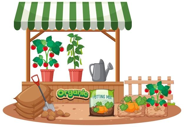 Geïsoleerde plantenwinkel op witte achtergrond 8