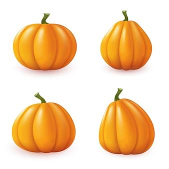 Geïsoleerde pompoenen op een witte achtergrond. set herfst elementen. vector illustratie