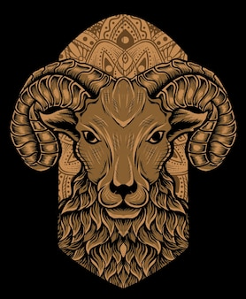 Geïsoleerde schapenkop