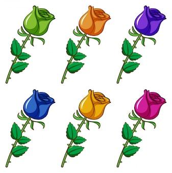 Geïsoleerde set van bloemen in verschillende kleuren