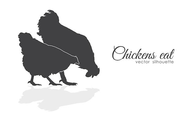 Geïsoleerde silhouet van kippen pikken voer op witte achtergrond.