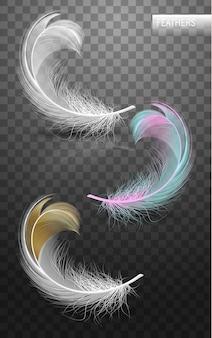 Geïsoleerde vallende pluizige gedraaide veren op transparante achtergrond in realistische stijl