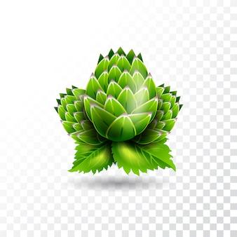 Geïsoleerde vector hop illustratie op transparante achtergrond.