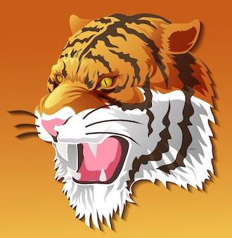 Geïsoleerdt tijgerhoofd op kleurenachtergrond.
