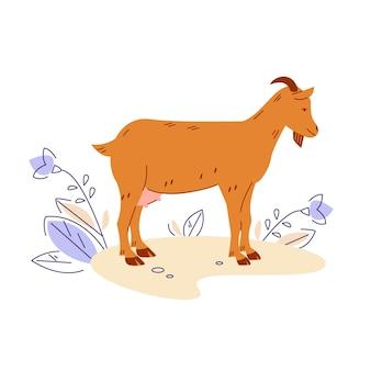 Geit. vectorillustratie in platte cartoonstijl.