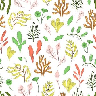 Gekleurd naadloos patroon met zeewieren