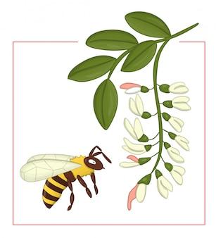 Gekleurde acacia met hommel.