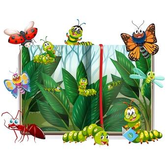 Gekleurde insecten collectie