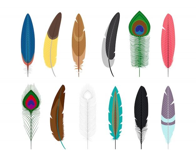 Gekleurde veren vectorpictogrammen die op witte achtergrond worden geïsoleerd